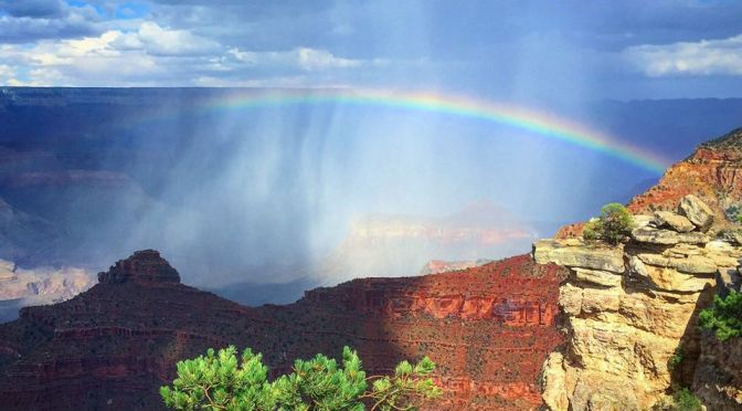 Just a Photo of a Beautiful Thing: Grand Canyon National Park