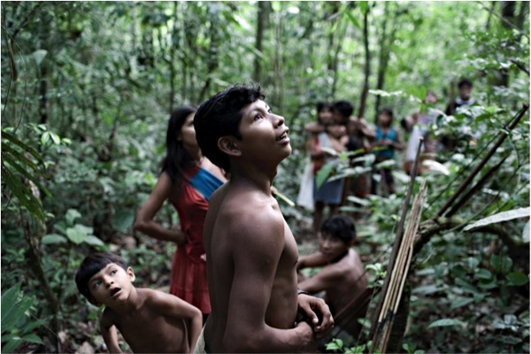 Brazil's Amazon: 10 Years, 90% Reduction in Deforestation