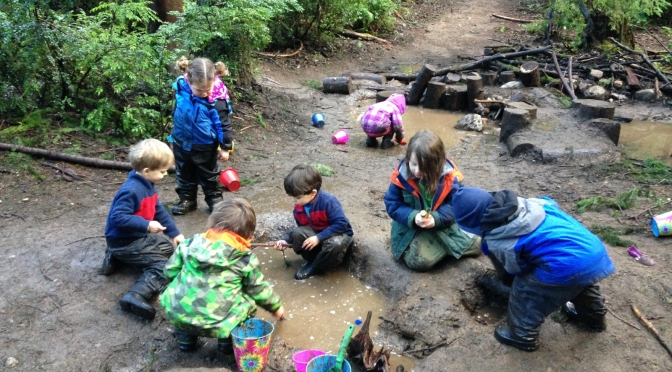 Lessons in the Wild: At the Cedarsong Nature School, the classroom is a forest