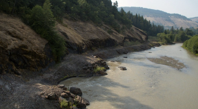 Cool Video: A River Restored