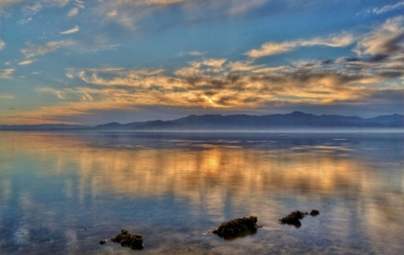 New Hope for the Salton Sea