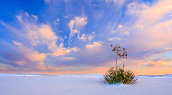 A Beautiful Thing: White Sands National Monument