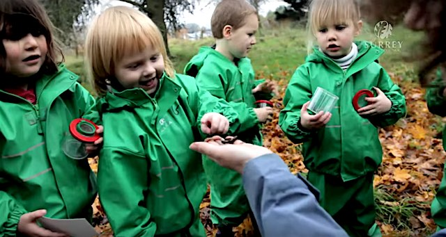 Seattle Is Opening 9 Totally-Outdoor Nature Preschools