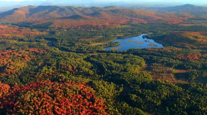 China's Richest Man Buys American Wildlife Reserve